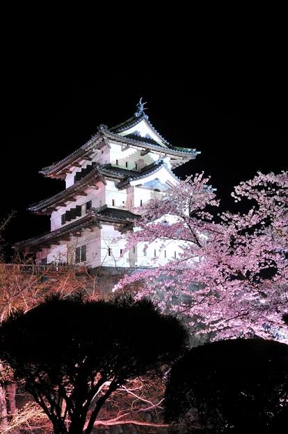 ライトアップされた弘前城と夜桜
