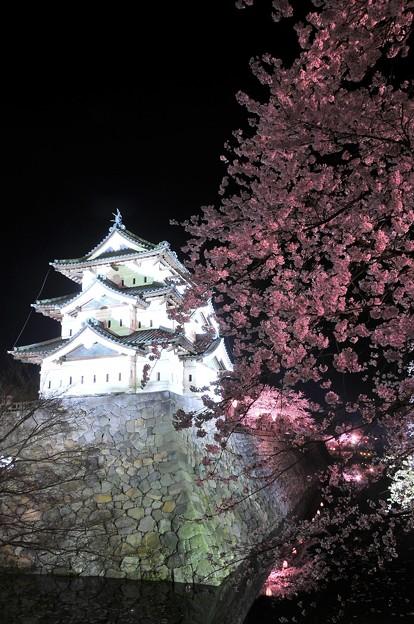 お堀から見たライトアップ弘前城と夜桜・・