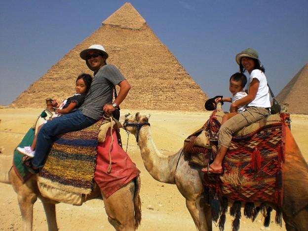 Photos: ラクダとピラミッド