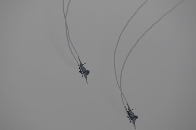 浜松基地航空祭2009_016