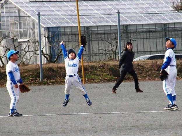 写真: CIMG1122:取れないと分かっていても 必ず飛んでくれる彼