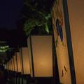 写真: ぼんぼり祭り 05