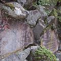 写真: 阿夫利神社 04