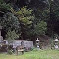 写真: 阿夫利神社から日向薬師へ 12