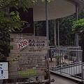 写真: 阿夫利神社から日向薬師へ 13