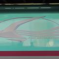 Photos: 新幹線E5系はやぶさ ロゴマーク